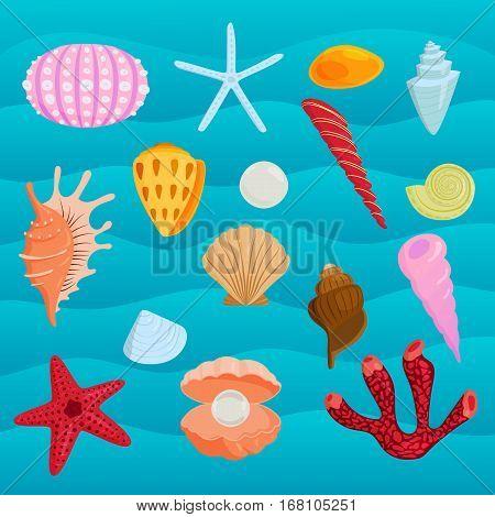 Sea marine animals and shells vector illustration. Spiral tropical mollusk decoration. Exotic snail aquarium beauty scallop nature seashell.