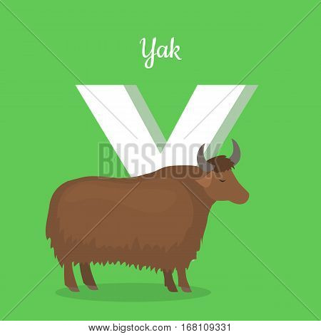 Animal alphabet vector concept. Flat style. Zoo ABC with domesticated animal. Yak bull standing on green background, letter Y behind. Educational glossary. For children s books, textbooks illustrating