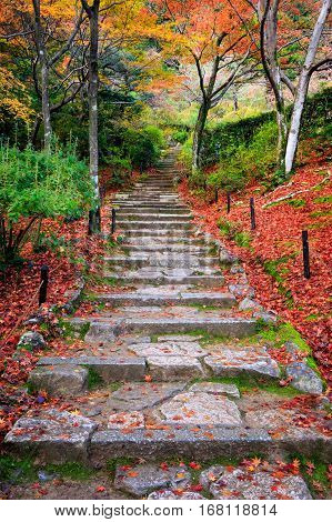 Stairway in autumn Jojakkoji temple Arashiyama Kyoto Japan