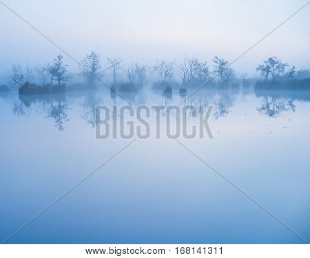 water reflecting woods on cold foggy day