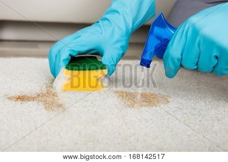 Close-up Of Person's Hand Cleaning Stain With Sponge On Carpet