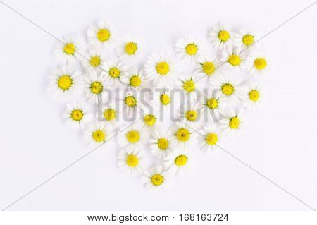 Daisy, heart, daisy, love, heart, romance, close up, spring, white, emotion, flower, heart, love, feelings, nature, tenderness, valentine's day, flowers. , wedding, background, love, illustration, flowers on a white background.