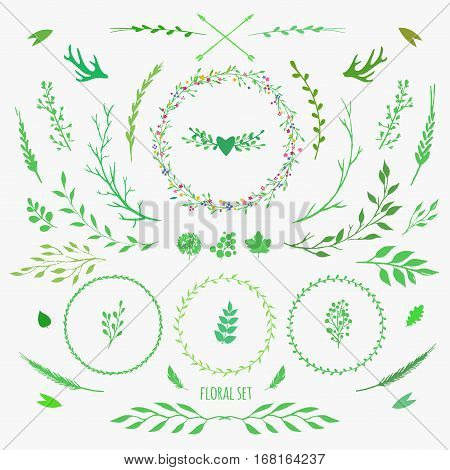 set of decorative floral elements for spring design, vector flowers, leaves, berries and sticks