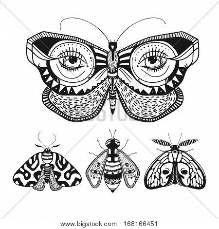 beautiful butterflies isolated on white, mystic hand drawn illustration with butterflies and moths