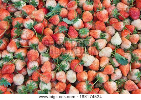 The strawberry fruit background in the market