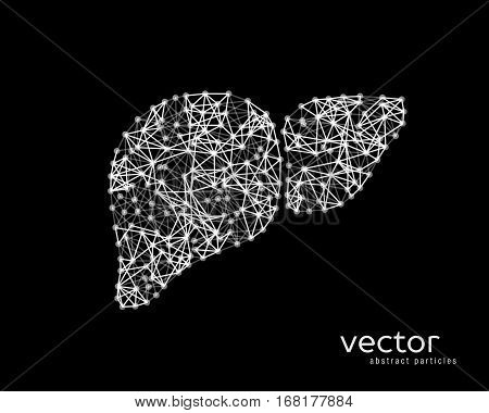 Vector Illustration Of Human Liver With Cirrhosis.