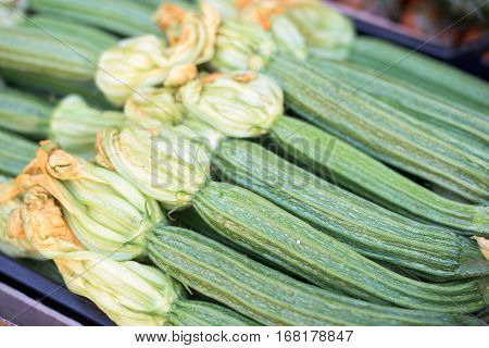 Fresh green zucchini with blossom in a row