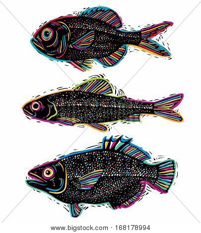 Set Of Vector Drawn Fishes, Different Underwater Species. Organic Seafood Graphic Symbols Collection
