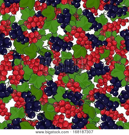 Seamless Redcurrant and Blackcurrant Pattern ,Fruit Pattern Berry Currant