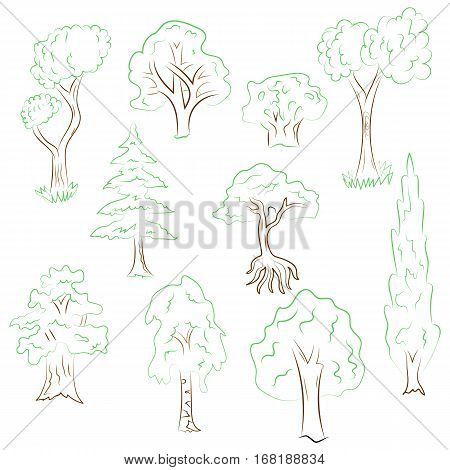 Hand Drawn Set of Trees. Doodle Drawings of Green Fir Cypress Birch Oak in Sketch Style. Vector Illustration.