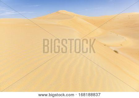 Beautiful sand dune formations in the Liwa Oasis. Emirate of Abu Dhabi United Arab Emirates
