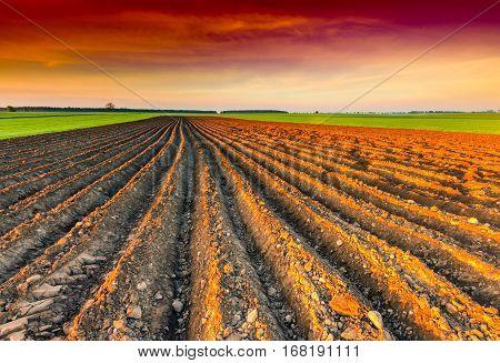 Spring Plowed Field In European Countryside