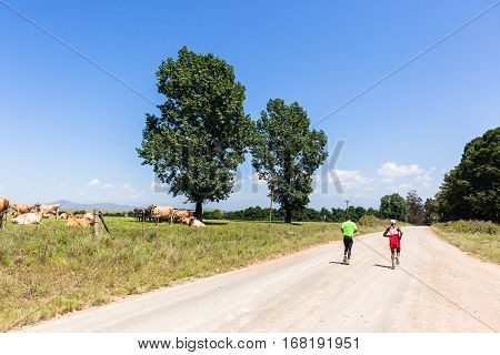 Marathon Runners Farmlands