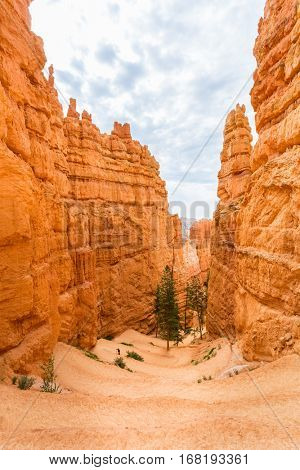 View from viewpoint of Bryce Canyon National Park
