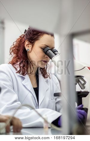 A Female Medical Or Scientific Researcher Or Woman Doctor Looking Through A Microscope In A Laborato