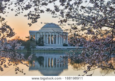 Washington DC during Cherry Blossom Festival - Jefferson Memorial during sunset