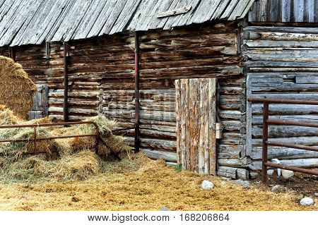 Old log barn with wooden roof is surrounded by hay. Barn sits in Happy Valley Montana.