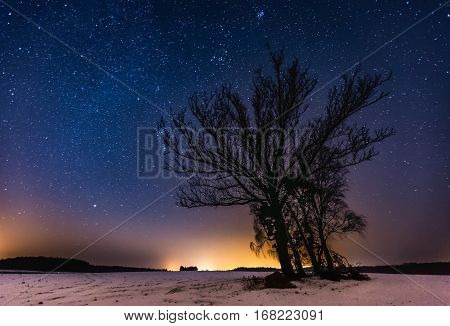 Milky Way And Starry Sky Over Winter Landscape