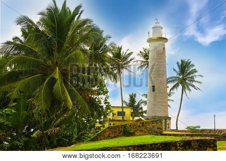 White lighthouse and tropical palms fort Galle Sri Lanka.
