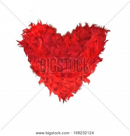 Red feathers heart shape isolated on a white background. Romantic symbol of love tenderness softness - perfect concept for St. Valentine's Day design