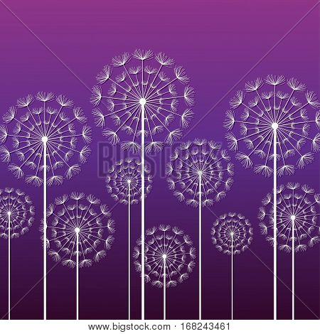 Dark purple ornamental background with stylized white dandelions. Vector illustration