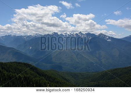 Landscape in the mountains, Olympic National Park, Washington, USA