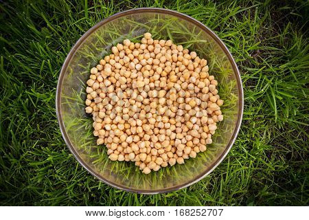 Raw Chick-peas Beans