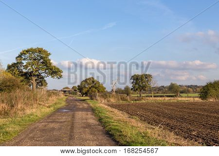 Farm track along side a ploughed field with trees and blue sky with clouds. Taken on a bright autumn afternoon.