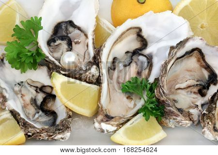 Fresh oysters with lemon fruit, parsley and a pearl on a porcelain plate.