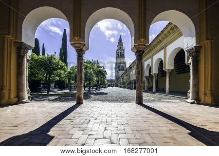 Court of the orange trees, Mosque of Cordova  is part of the Cathedral Mosque of Cordoba, and is undoubtedly the largest and oldest courtyard of the city of the year 786.