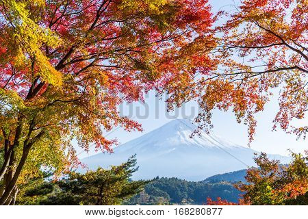 Mount Fuji in Autumn of Japan