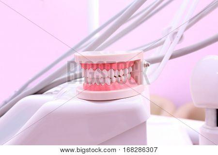 Dental jaw model in modern clinic