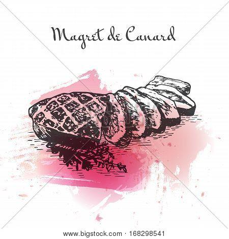 Magret de Canard watercolor effect illustration. Vector illustration of French cuisine.