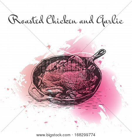 Roasted Chicken and Garlic watercolor effect illustration. Vector illustration of French cuisine.