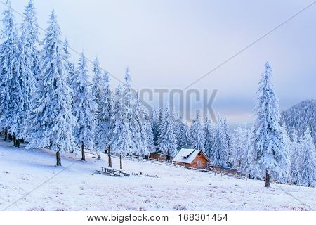 Idyllic cottage in fogy misty winter, wonderful landscape