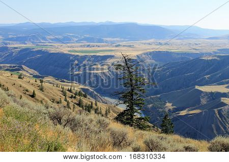 Chilcotin River nature scenic of the Cariboo district