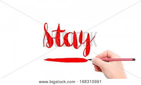 The verb Stay written on a white background