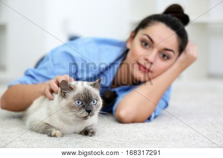 Cute beautiful cat with owner at home