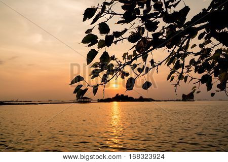 silhouette of tree The atmosphere during sunset at Koh Loi SrirachaChonburiThailand