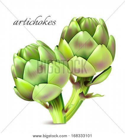 Artichokes. Vector illustration.Fully editable handmade mesh.