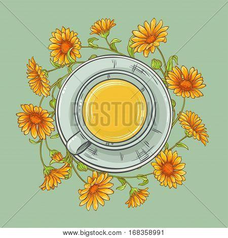 cup of calendula tea and calendula flowers