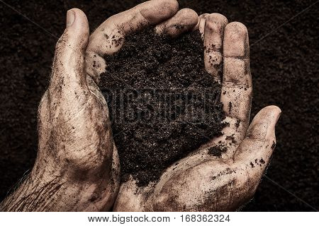 Soil in male dirty hands. Agriculture background