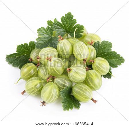 green gooseberry fruits with leaf on white