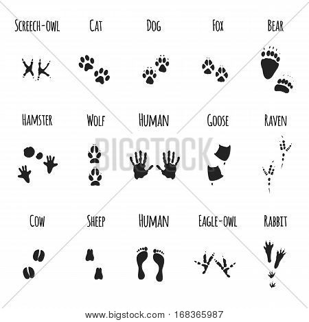 soles imprints birds feet and animal paws black prints - vector icons set