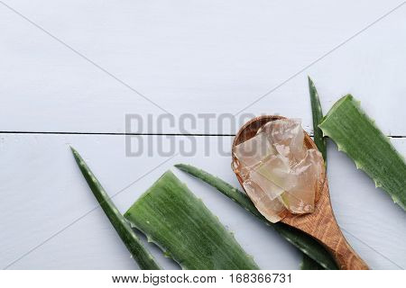 Medicine. Aloe vera on the table