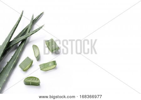 Medicine. Aloe vera on a white background