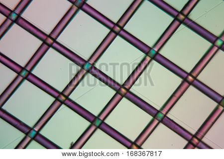A net of polylactic acid under the microscope and in polarized light. Polylactic acid is a bioactive and biodegradable polymer made of renewable resources.