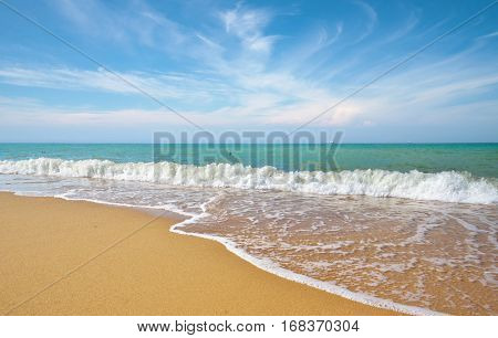 Beautiful coast of beach at day