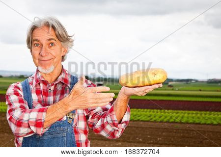 farmer standing in front of his field, showing the huge potatoes he grows