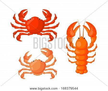 Lobster and crab vector flat illustration isolated on white background. Fresh seafood icon claw meal. Gourmet crustacean cooked dinner marine fish delicious.